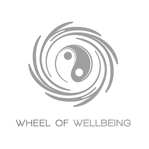 Vision-Fitness-and-Wellness-Partners---Wheel-of-Wellbeing